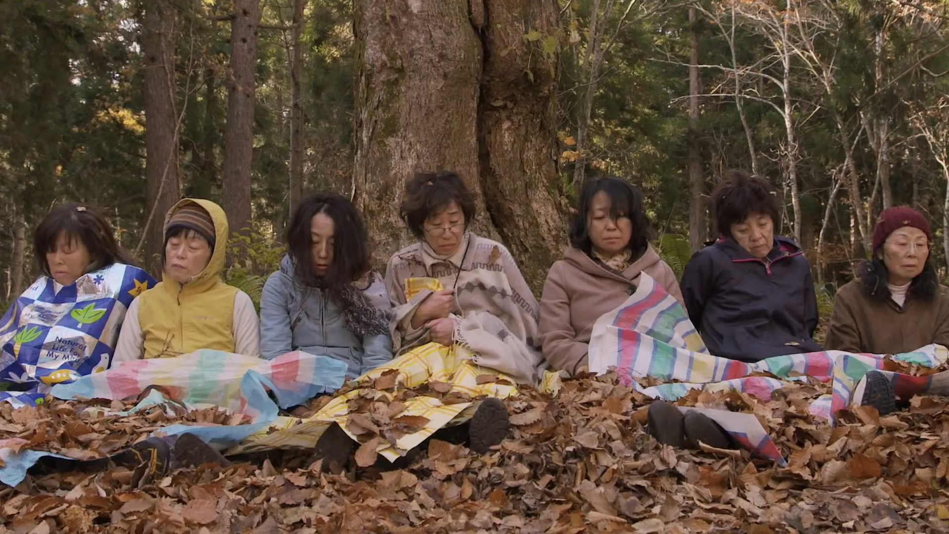 映画「滝を見に行く」