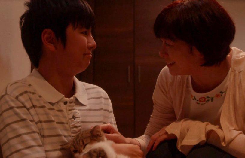 ドキュメンタリードラマ<br />「猫探偵の事件簿3」